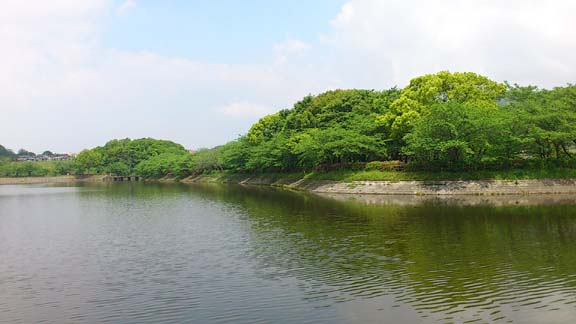 f:id:puchitenshi:20130515180354j:image