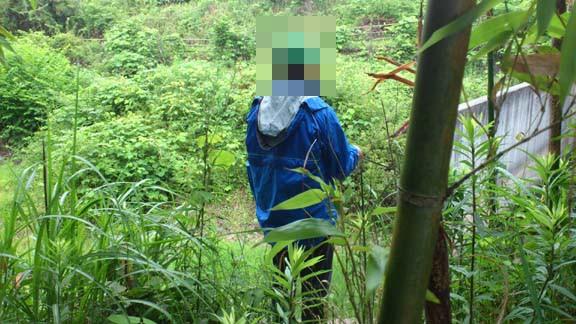 f:id:puchitenshi:20130619070707j:image