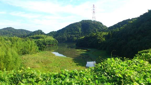 f:id:puchitenshi:20130716013011j:image