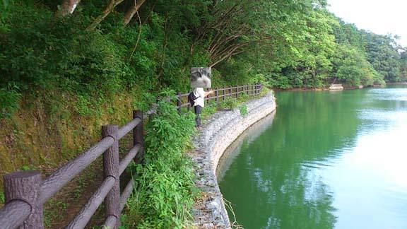 f:id:puchitenshi:20130727181051j:image