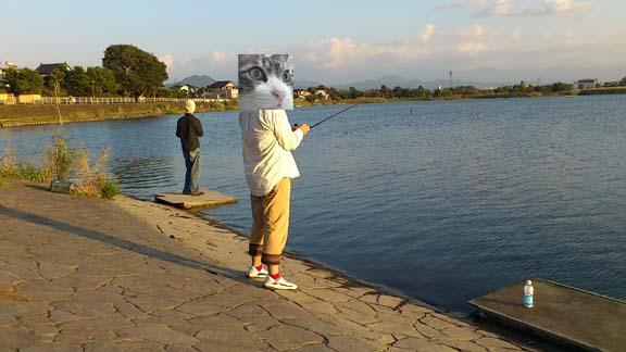 f:id:puchitenshi:20131026164746j:image