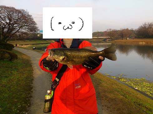 f:id:puchitenshi:20140206023346j:image