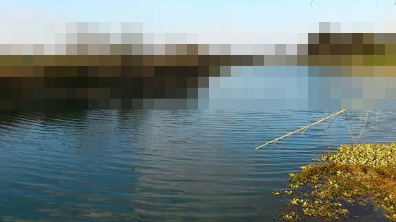 f:id:puchitenshi:20140228220547j:image