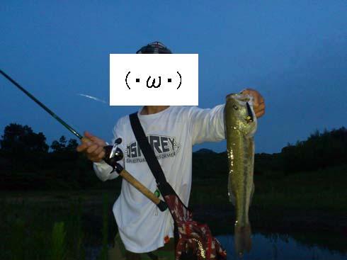f:id:puchitenshi:20140706030421j:image