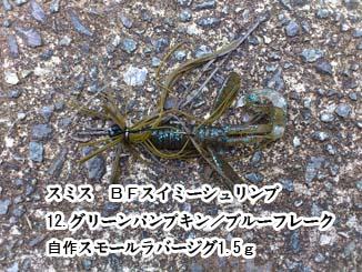 f:id:puchitenshi:20140809111706j:image