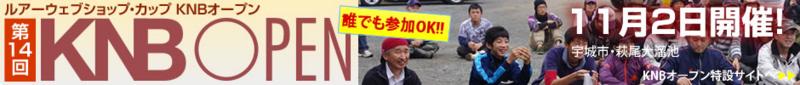 f:id:puchitenshi:20141114004702j:image