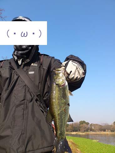 f:id:puchitenshi:20150130003927j:image
