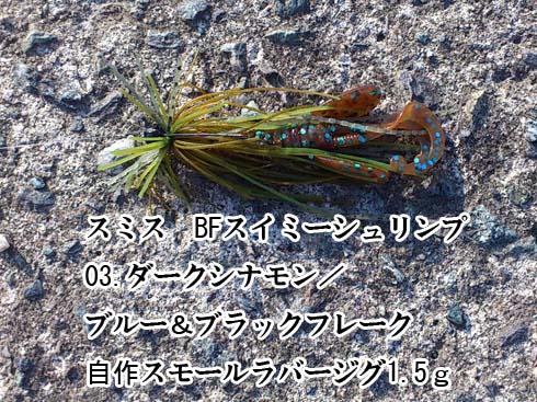 f:id:puchitenshi:20150618195110j:image