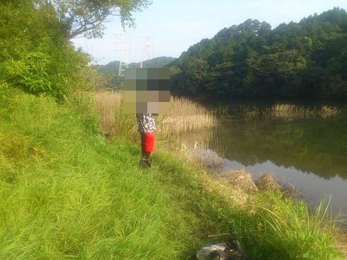 f:id:puchitenshi:20151027010644j:image