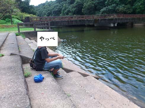 f:id:puchitenshi:20151106005614j:image