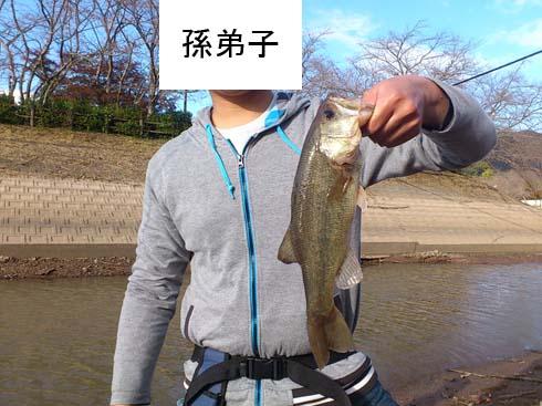 f:id:puchitenshi:20160110212459j:image