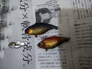 f:id:puchitenshi:20170319123356j:image