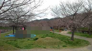 f:id:puchitenshi:20170411032954j:image