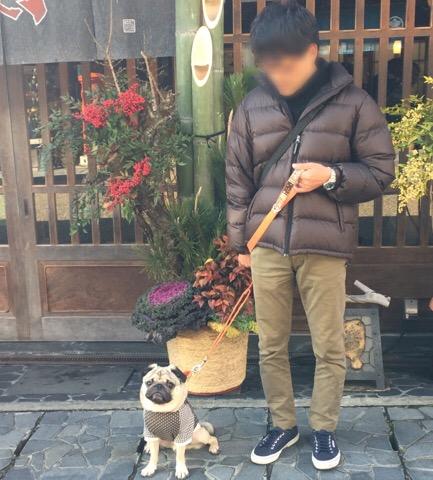 f:id:pughug:20170105180222j:plain