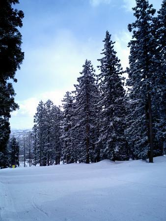 スノーボードで行った赤倉温泉スキー場。中央ゲレンデエレガントコー