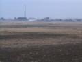緑の田んぼも冬景色