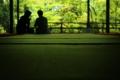 京都新聞写真コンテスト 緑の劇場