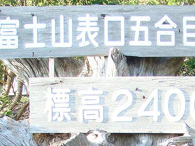 DSC07714.jpg