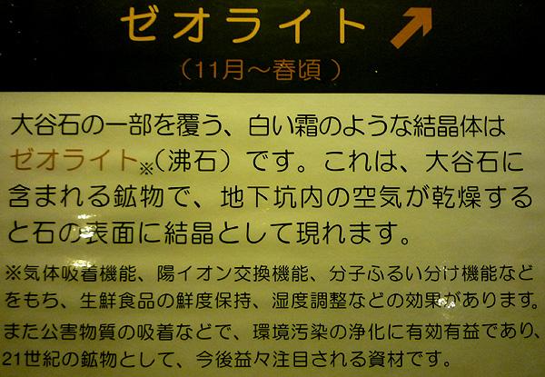 P1020112.jpg