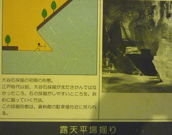 P1020134.jpg