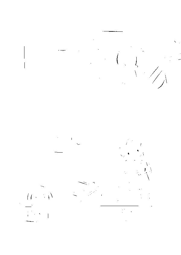 f:id:pupupu:20170806214300p:plain