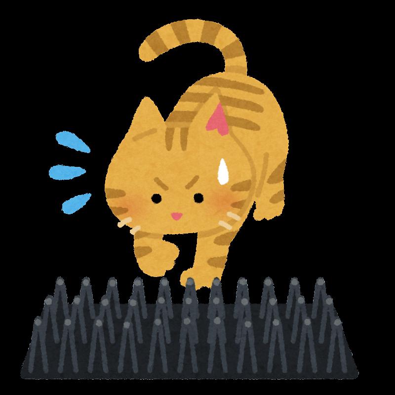 野良猫とここダメシートのイラスト