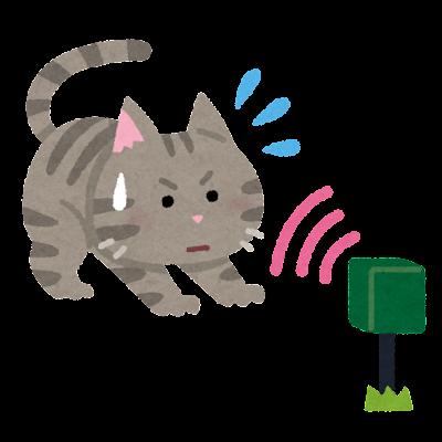野良猫のイラスト