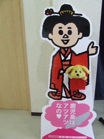 f:id:pure-ri-dog:20080214110429j:image