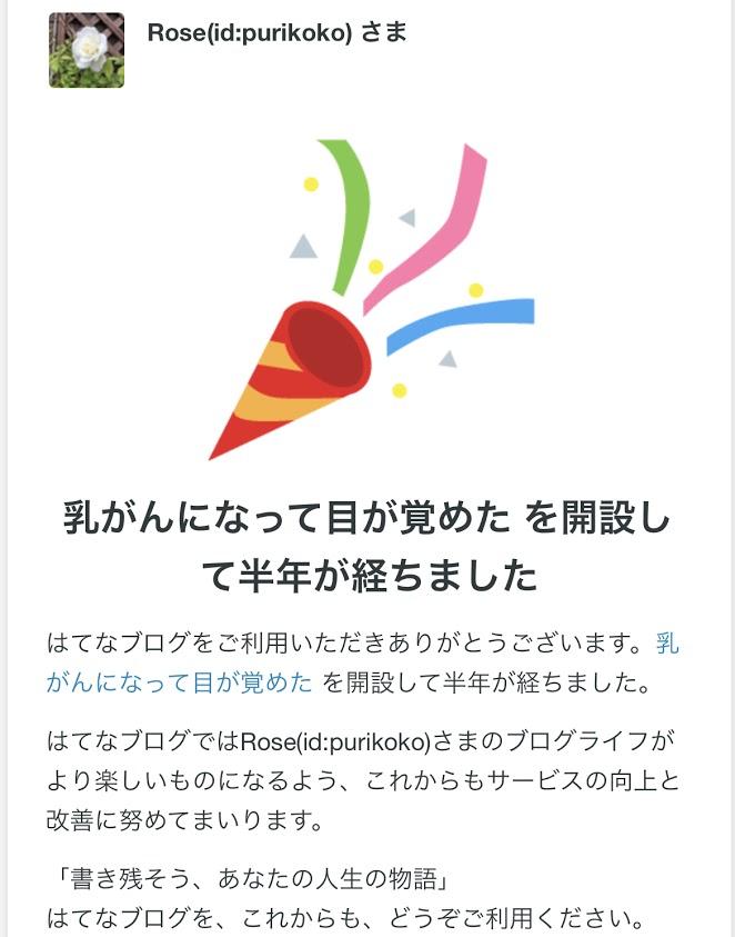 f:id:purikoko:20210429111130j:plain