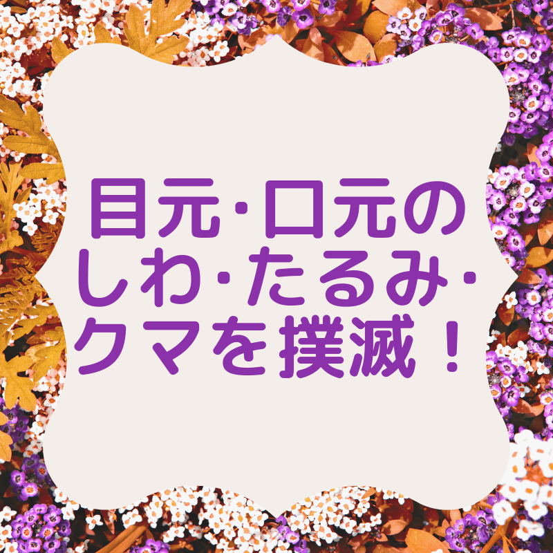f:id:purple0221:20190518185030p:plain