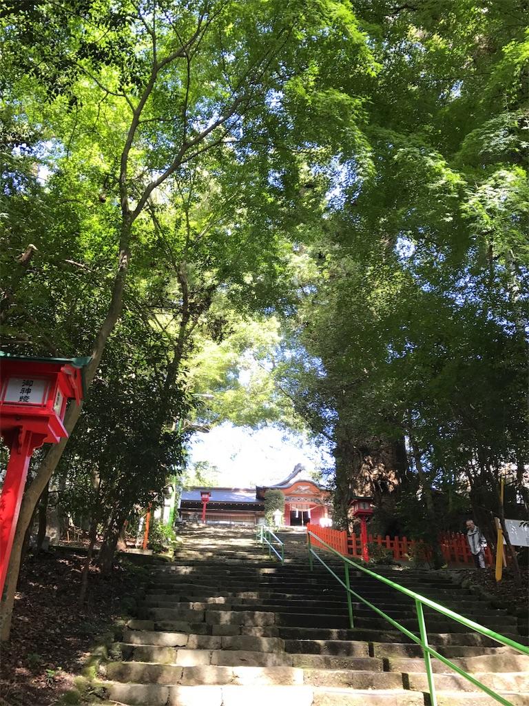 f:id:putiterasu:20171023222447j:image