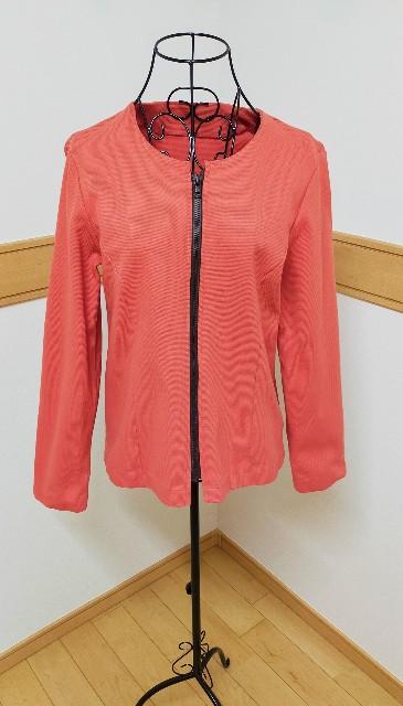 ニットソーイングのファスナーのノーカラーのレディースのジャケット