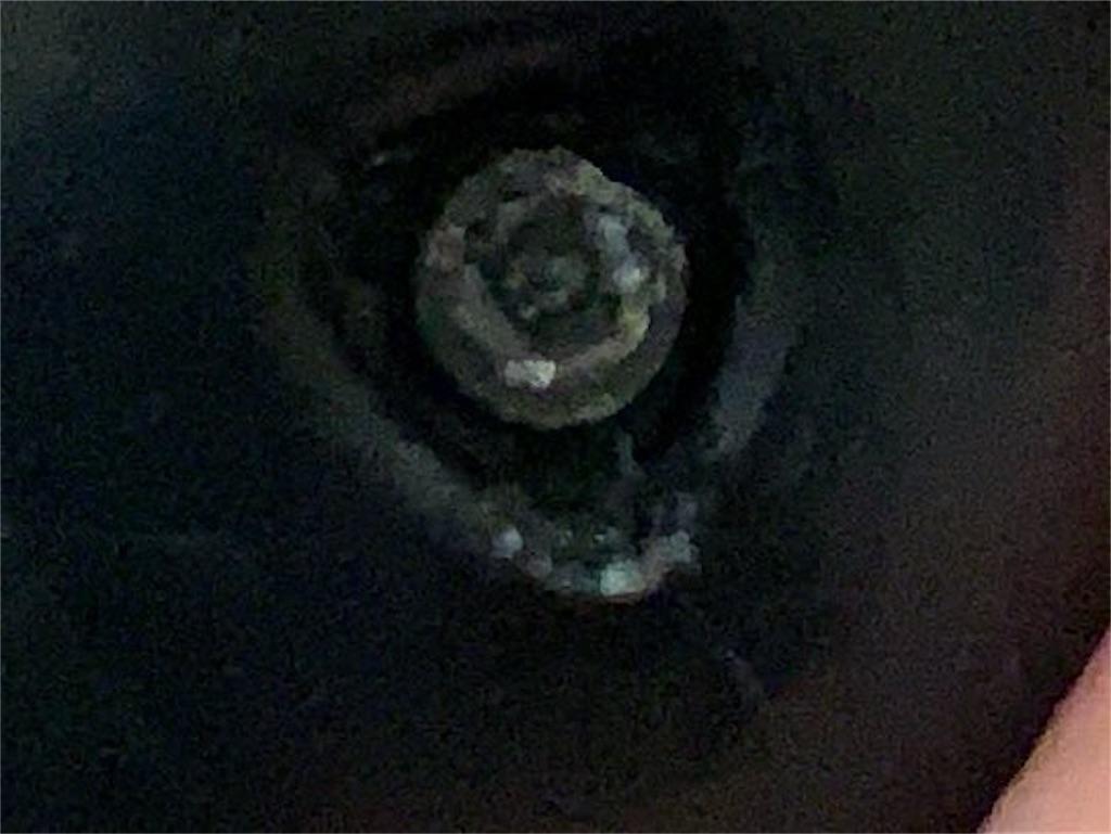 f:id:pyonargentum:20201201015807j:image