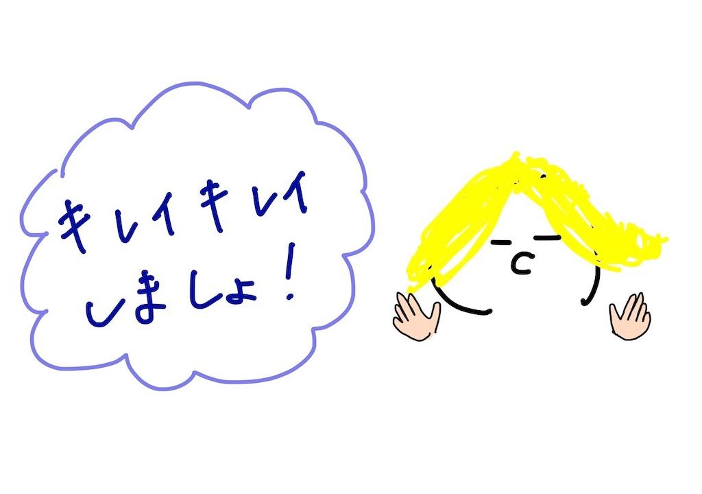 f:id:pyonkichiii:20181222072246j:image