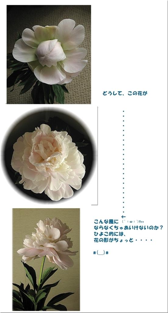 f:id:pypyhiyoko:20170704181456j:plain
