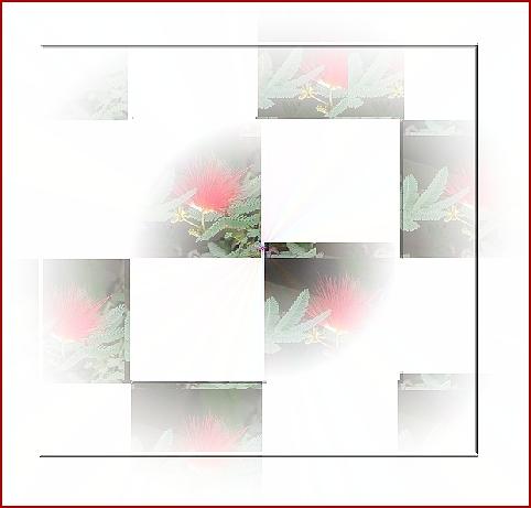 f:id:pypyhiyoko:20210316150419j:plain