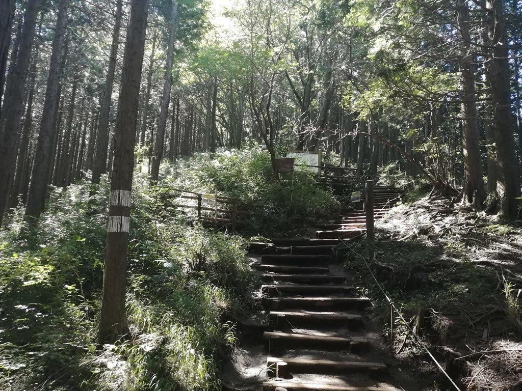 09:15 城山山頂からの急な階段の下り