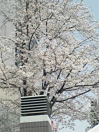 TBS21世紀時計前広場