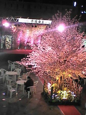 赤坂春まつり