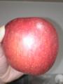商店街の福引きで当たったりんご(サンフジ)