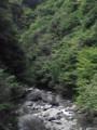 つり橋から見る尾白川