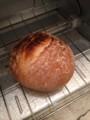 デニーズで買った石窯パンをトーストする