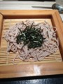 乱切り風ざる蕎麦(ハーフ)¥380