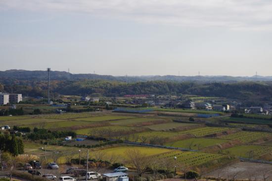 小脇公園_20121124_3