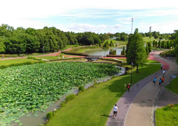 いのちの池
