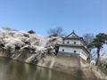 新発田城2