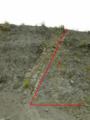 透間採石場(伊豆半島との海底に流れ込んだ土砂の堆積層が隆起)