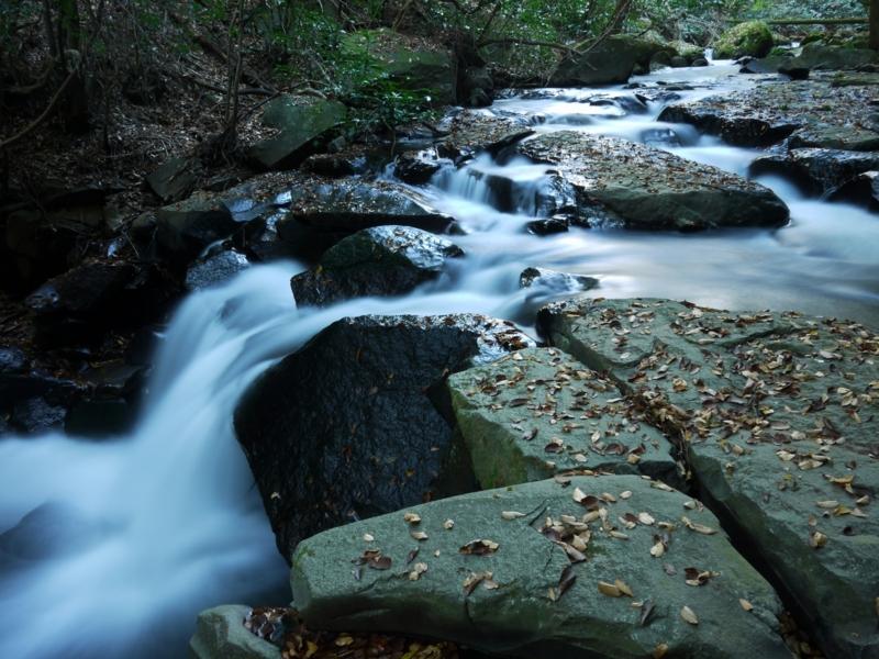 f:id:qshiro:20121201115215j:image:w360