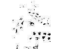 f:id:qt_fb:20090504003821p:image
