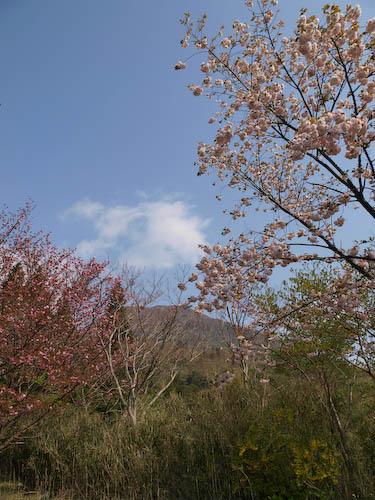 鶴見岳登山口